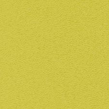 ROMA kolor: limonkowy (VP0906)