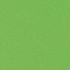 ROMA kolor: jasny zielony (VP0907)