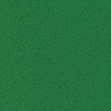 ROMA kolor: ciemny zielony (VP0908)